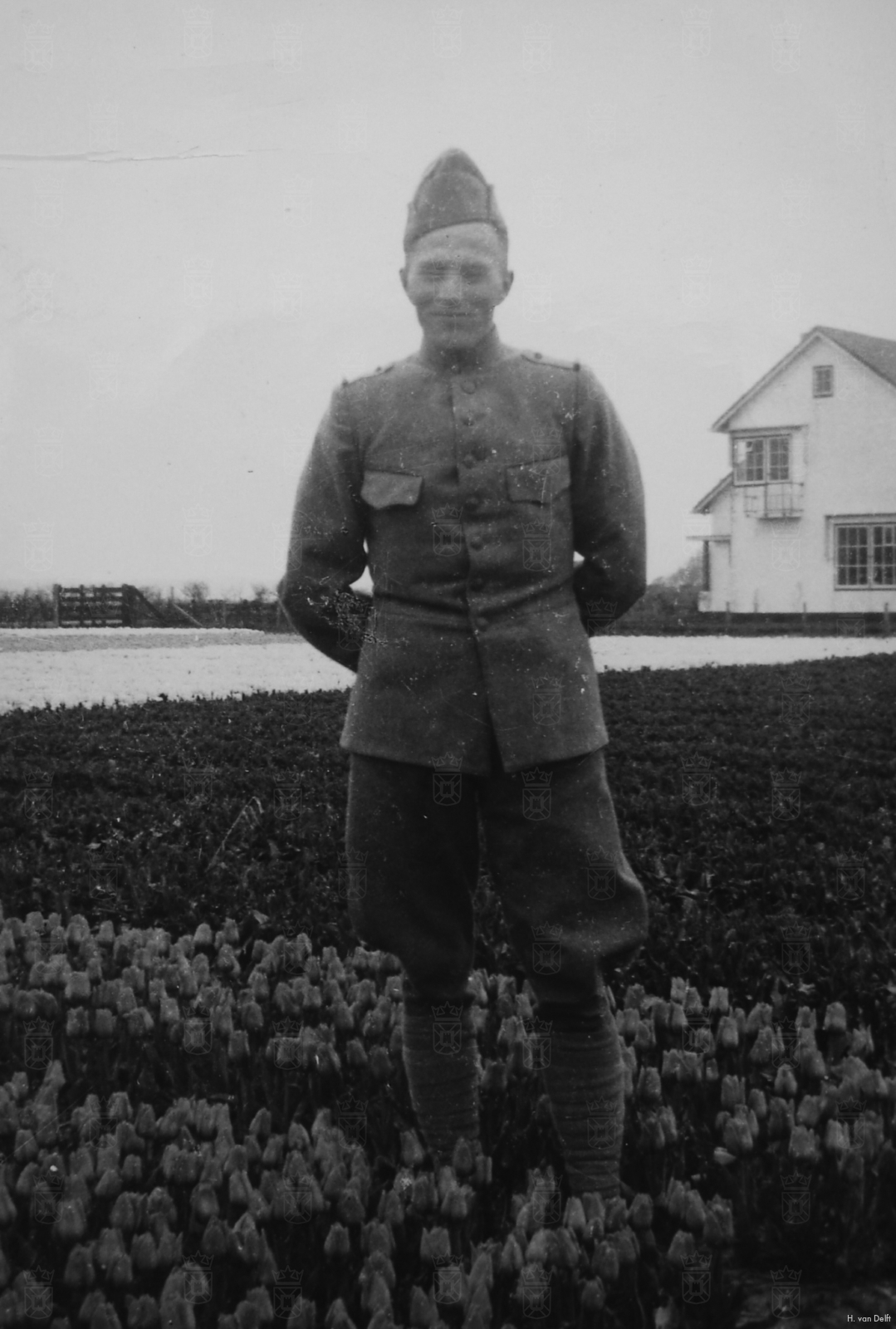 Dirk tijdens zijn diensttijd tussen de tulpen in Rijnsburg.