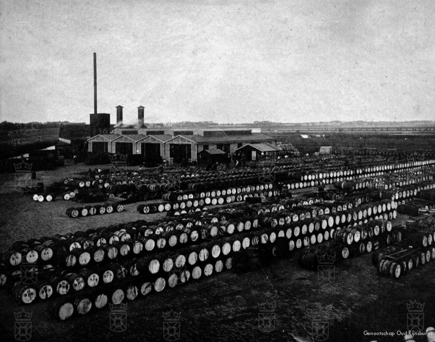De conservenfabriek C.D. van der Vijver aan de Katwijkerweg.